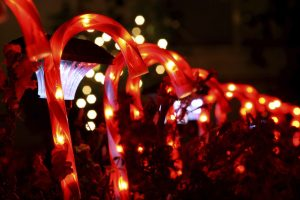 Check out Light Up Inverness this December in Inverness, FL